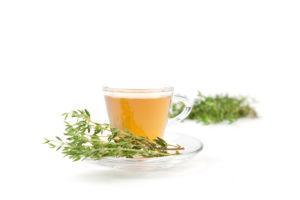 Thymiantee in Teetasse mit frischen Krutern, weier Hintergrund