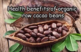 raw-cacao